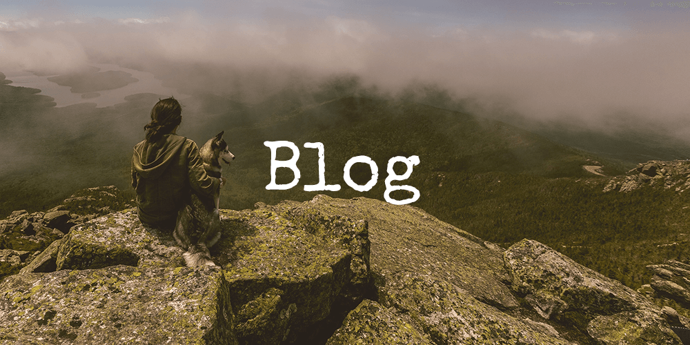 Essential Oil and Personal Care Product Educational Blog From High Altitude Living